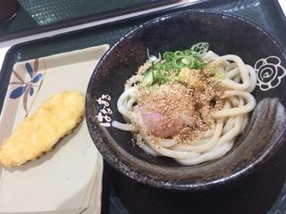 はなまるうどん アピタ鳴海店5.JPG