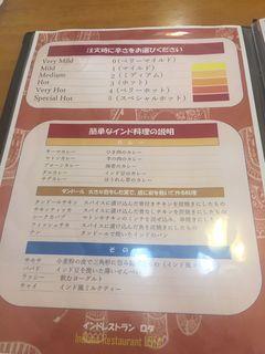 インディアンレストラン ロタ4.JPG
