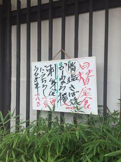 稲与1.JPG